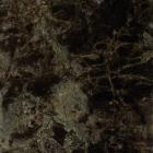 Напольная плитка под мрамор 45x45 Click Ceramica DARK EMPERADOR (темно-коричневая)