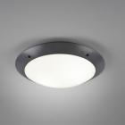 Потолочный светильник Trio Reality Camaro R60502042 белый матовый/антрацит