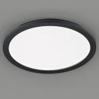 Потолочный LED-светильник Trio Reality Camillus R62922432 черный матовый