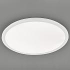 Потолочный LED-светильник Trio Reality Camillus R62923001 белый