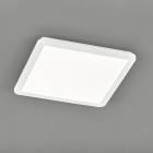 Потолочный LED-светильник Trio Reality Camillus R62932001 белый