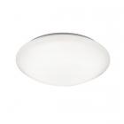 Потолочный LED-светильник Trio Converter 658311401 белый