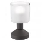Настольная лампа Trio Reality Gral R59521024 металл рустик/стекло сатин