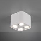 Накладной точечный светильник на 4 лампы Trio Cookie 612900431 матовый белый