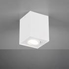 Накладной точечный светильник Trio Biscuit 613000131 матовый белый