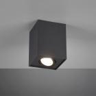 Накладной точечный светильник Trio Biscuit 613000132 матовый черный