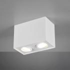 Накладной двойной точечный светильник Trio Biscuit 613000231 матовый белый
