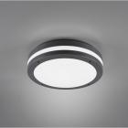 Потолочный LED-светильник Trio Reality Kendal R62151142 черный