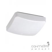 Потолочный светильник Reality Patz R62530901 белый акрил