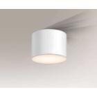 Светильник потолочный влагостойкий Shilo Suwa 7720 белый, металл, сталь, алюминий