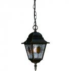 Подвесной светильник уличный Blitz 5170-31, классика