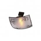 Потолочный светильник Blitz 2944-21