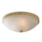 Потолочный светильник Blitz 2944-33