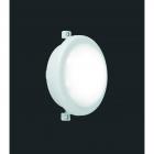 Уличный светильник Reality Hamal R62301101 LED модуль