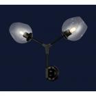 Настенный светильник Levistella 756LWPR0231-2 BK+CL