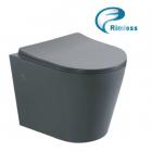 Подвесной безободковый унитаз с сидением Asignatura Axiom Rimless 97802806 серый матовый