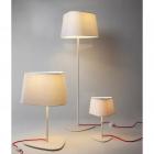 Настольная лампа декоративная Terra Svet Clod 053961/1 T wt